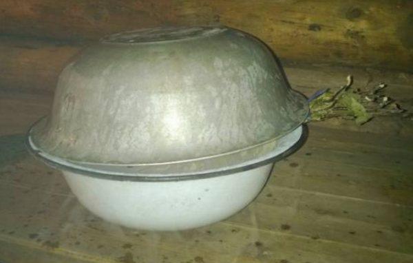 Когда можно заготавливать березовые веники